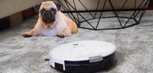 alfombra, Robot Aspiradora y perro