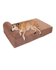 Cama grande para perros cuadrada y perro