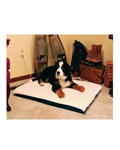 Perro echado sobre cama para perros