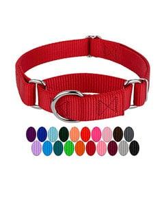Collar rojo y paleta de muestra de colores