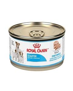 Lata de alimento para perro Royal Canin