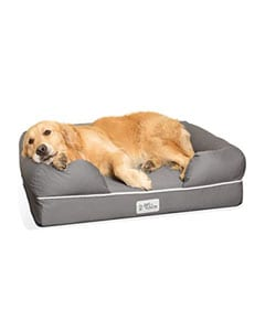 Perro y cama