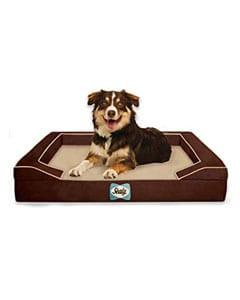 Cama cuadrada para perros y perro